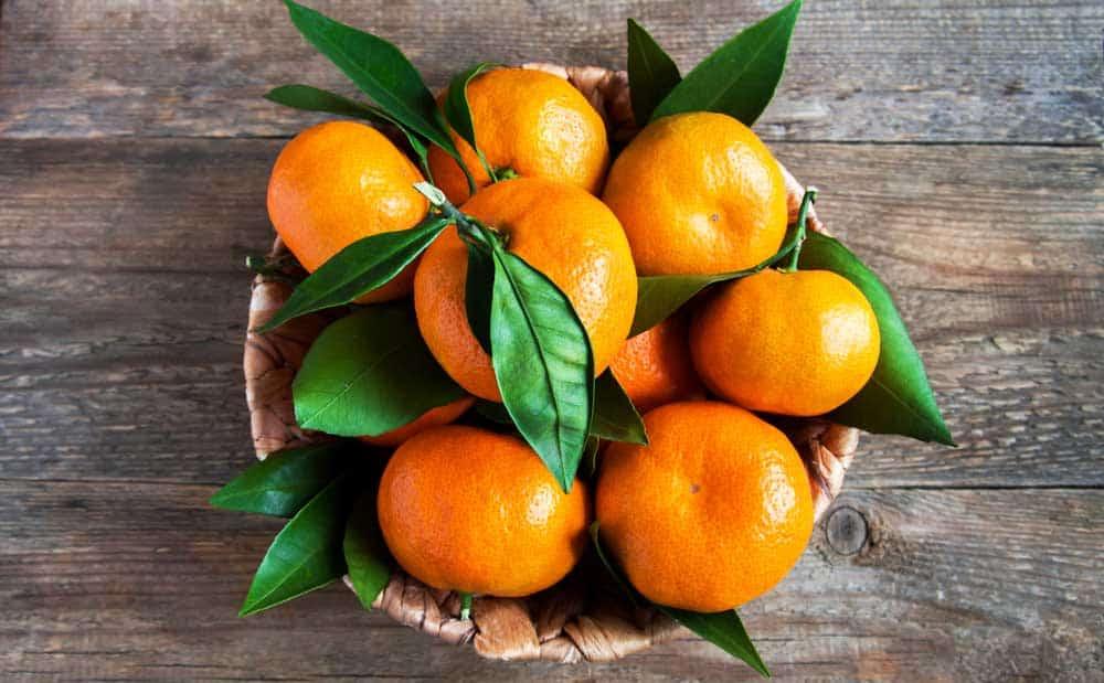 tipos de mandarinas