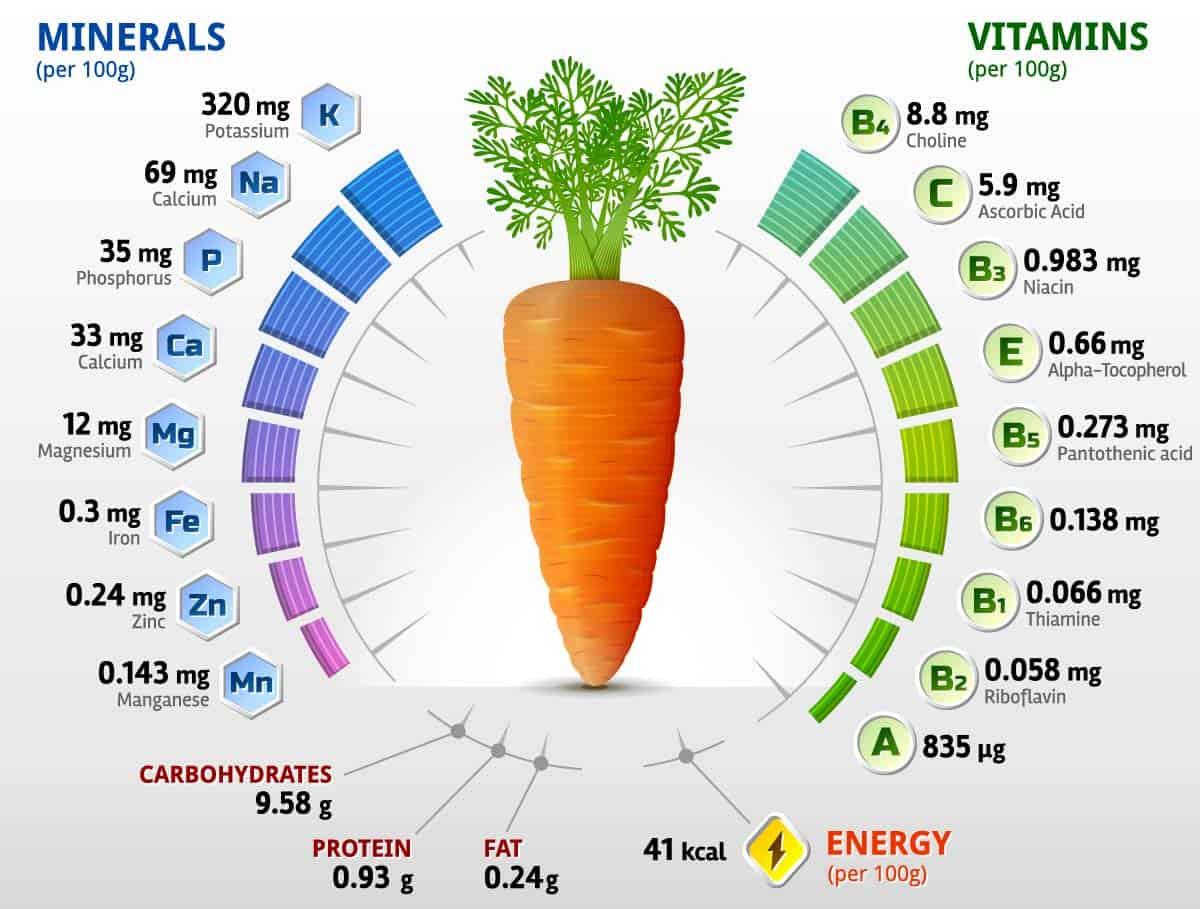 Zanahoria Propiedades Y Beneficios Vitaminas Y Minerales Cultivo Groups they admin or create will appear here. zanahoria propiedades y beneficios