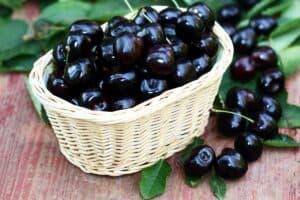 cerezas negras