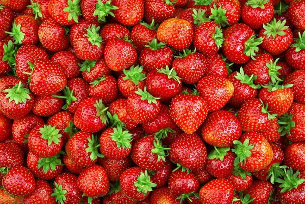 tipos de fresa