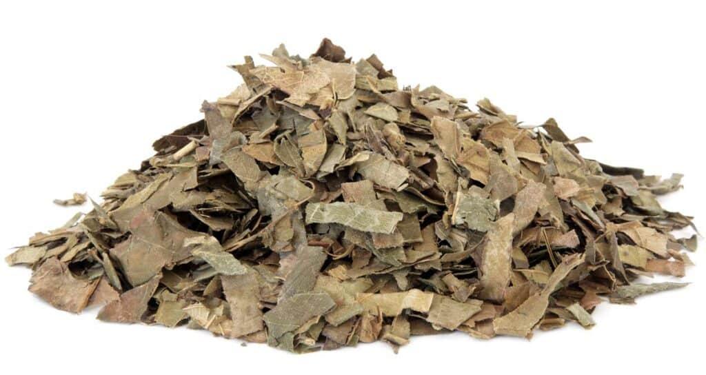 consumo hojas de nispero