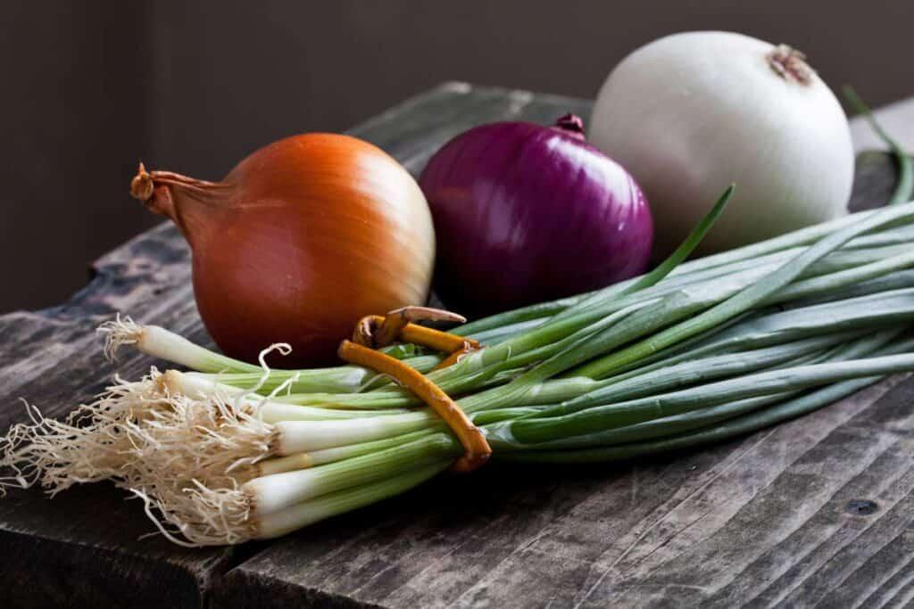 Cebolla Propiedades y Beneficios Cultivo y Más | FrutasyVerduras.info