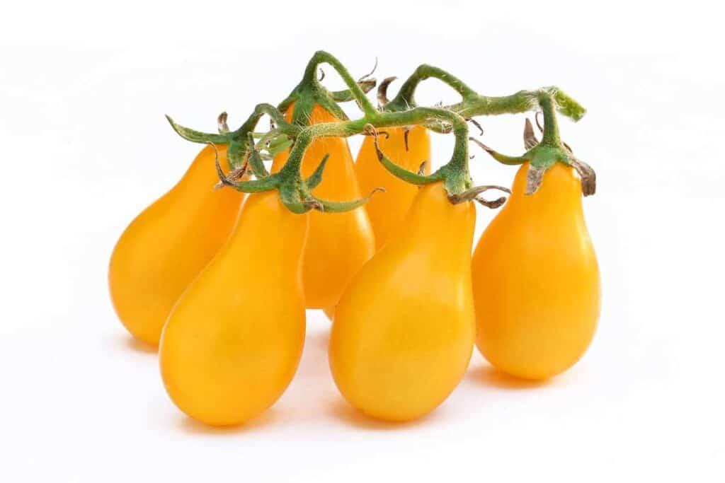 tomate pera amarillo