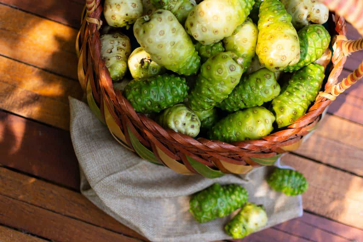 Noni Propiedades y Beneficios - Frutas y Verduras
